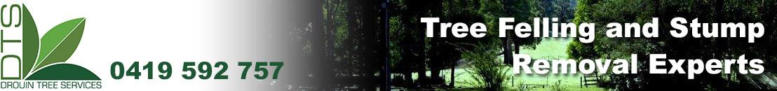 Drouin Tree Services